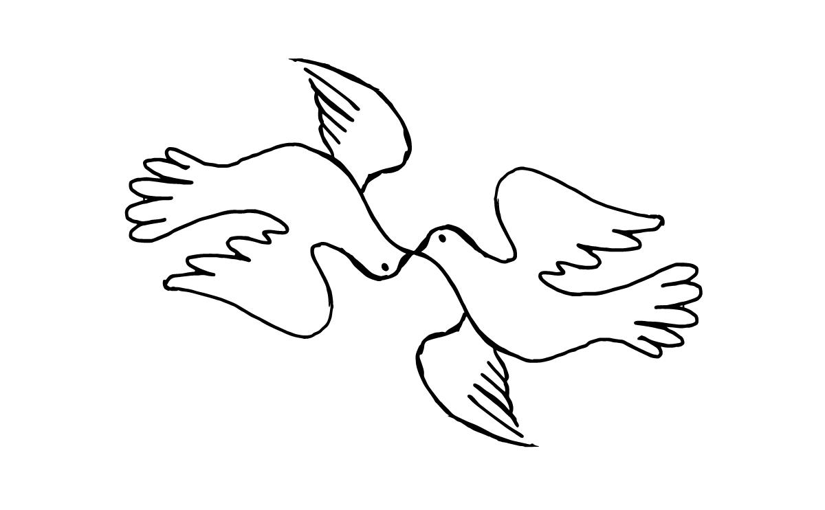 bird2017